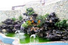 花园鱼池假山