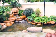 别墅花园一角假山鱼池景